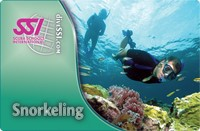 snorkeling card